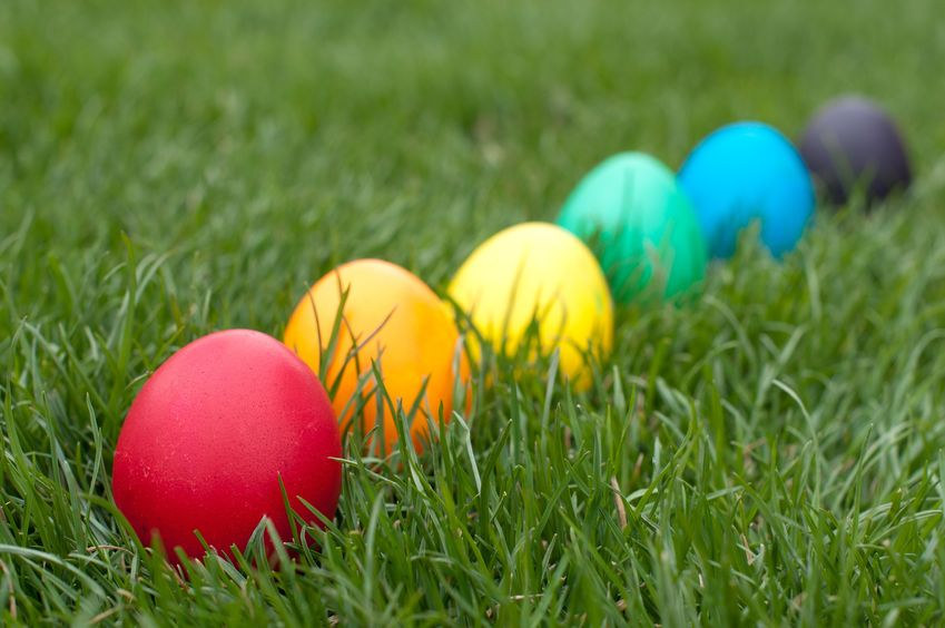 Easter Egg Hunts are Perfect for any Easter Event