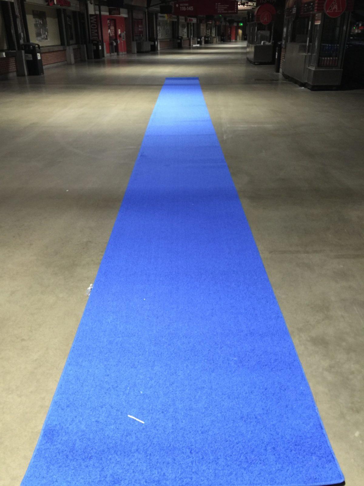 50′ Blue Runner