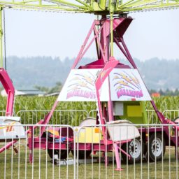 Ballistic Carnival Swing Ride