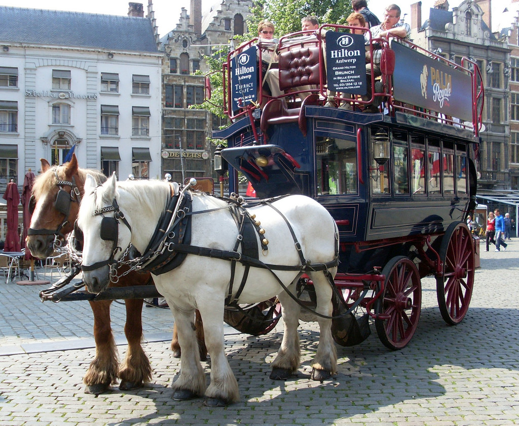 horse drawn carriage hotel shuttle