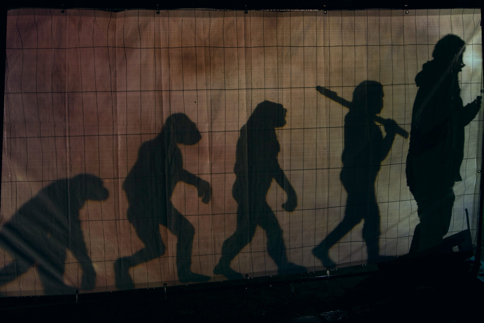 """The March of Progress"" human evolution shadow art"