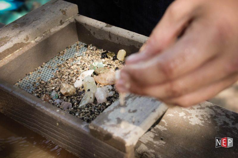 Vasa Park shells