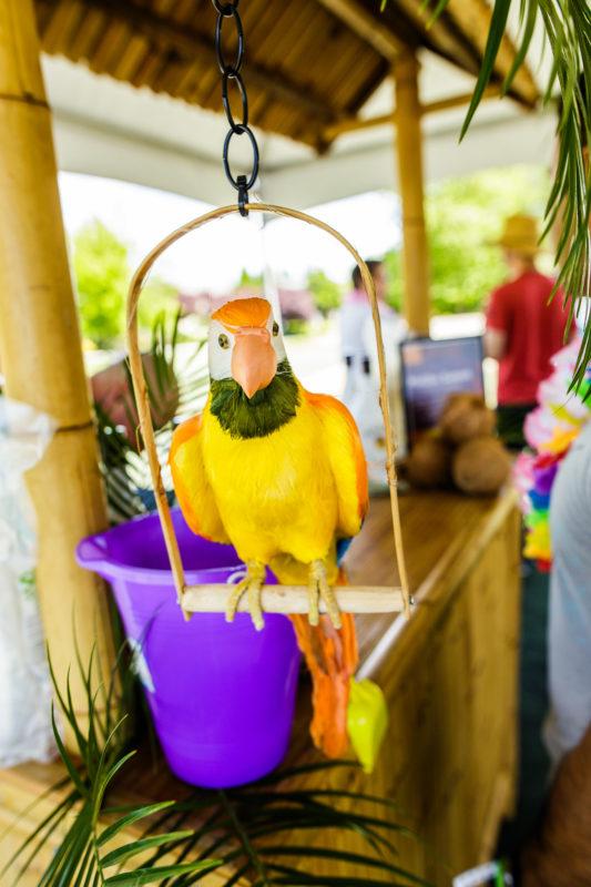 Summer Luau Event