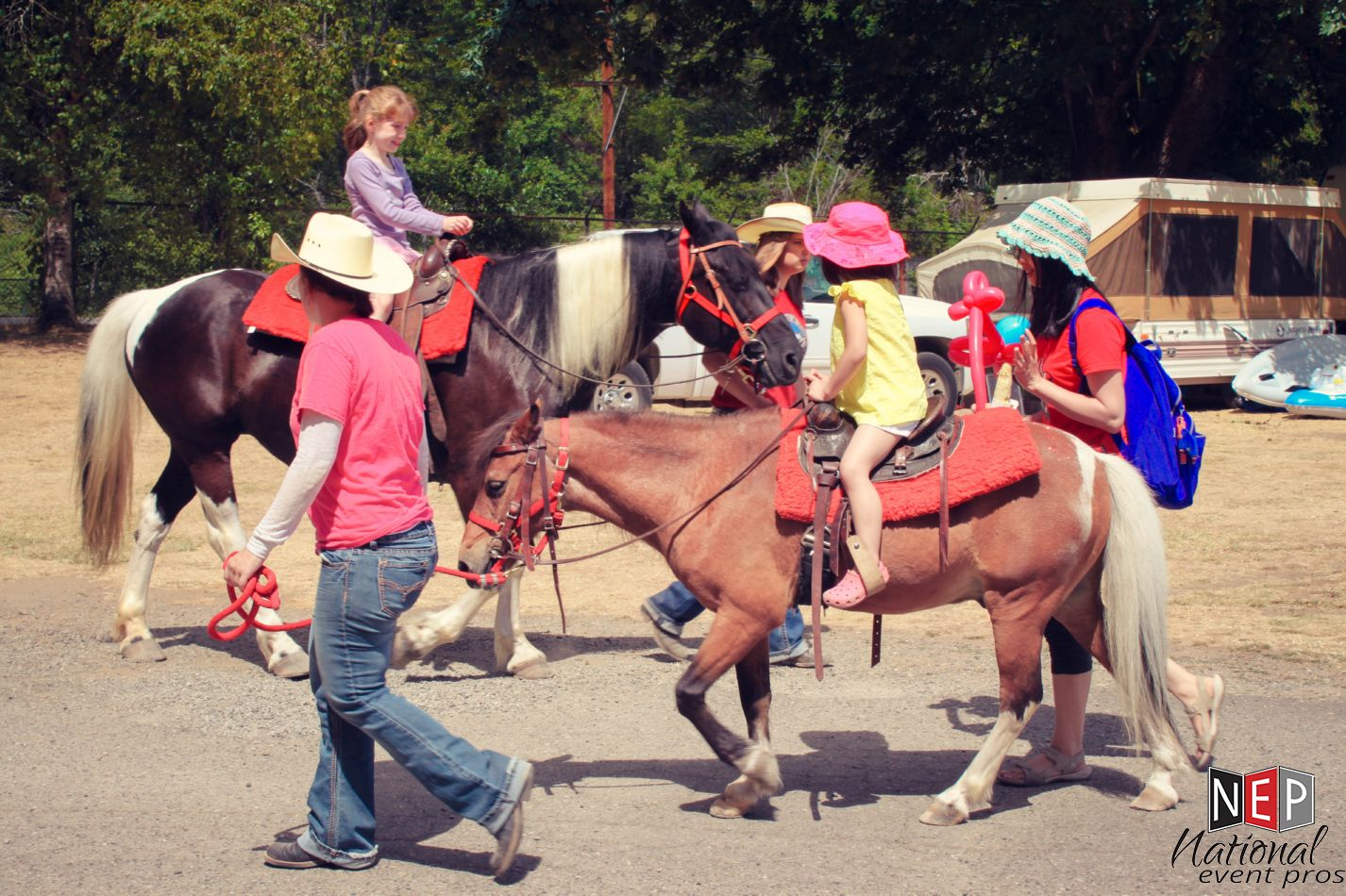 Vasa Park horses