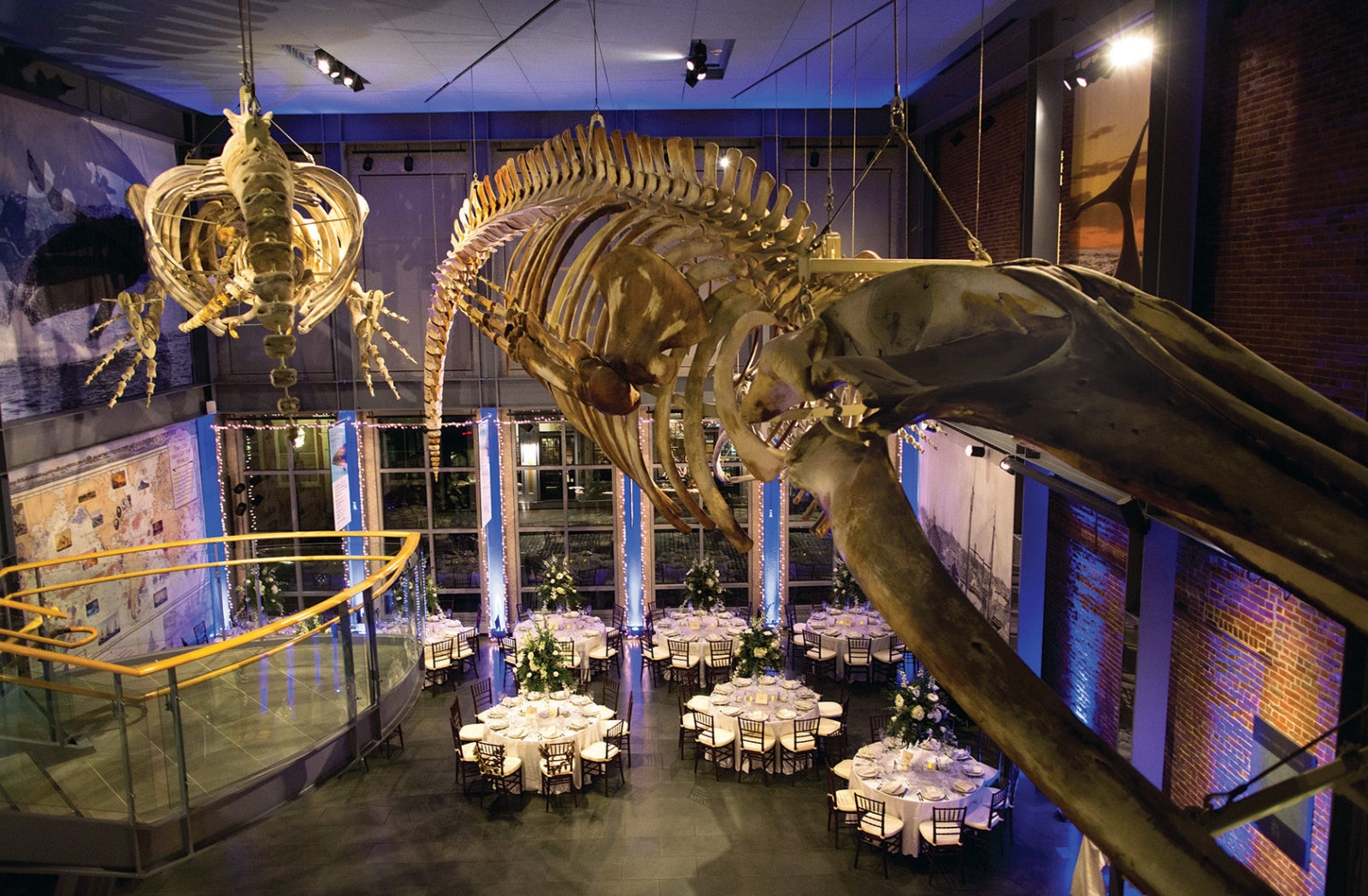 natural history museum as a private event venue