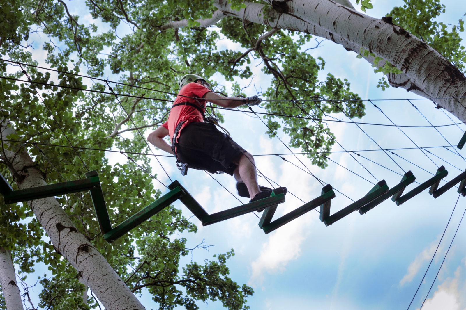 Tree-Top Course theme for events