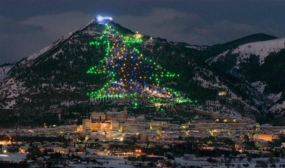 Monte Ingino Italy Christmas Tree