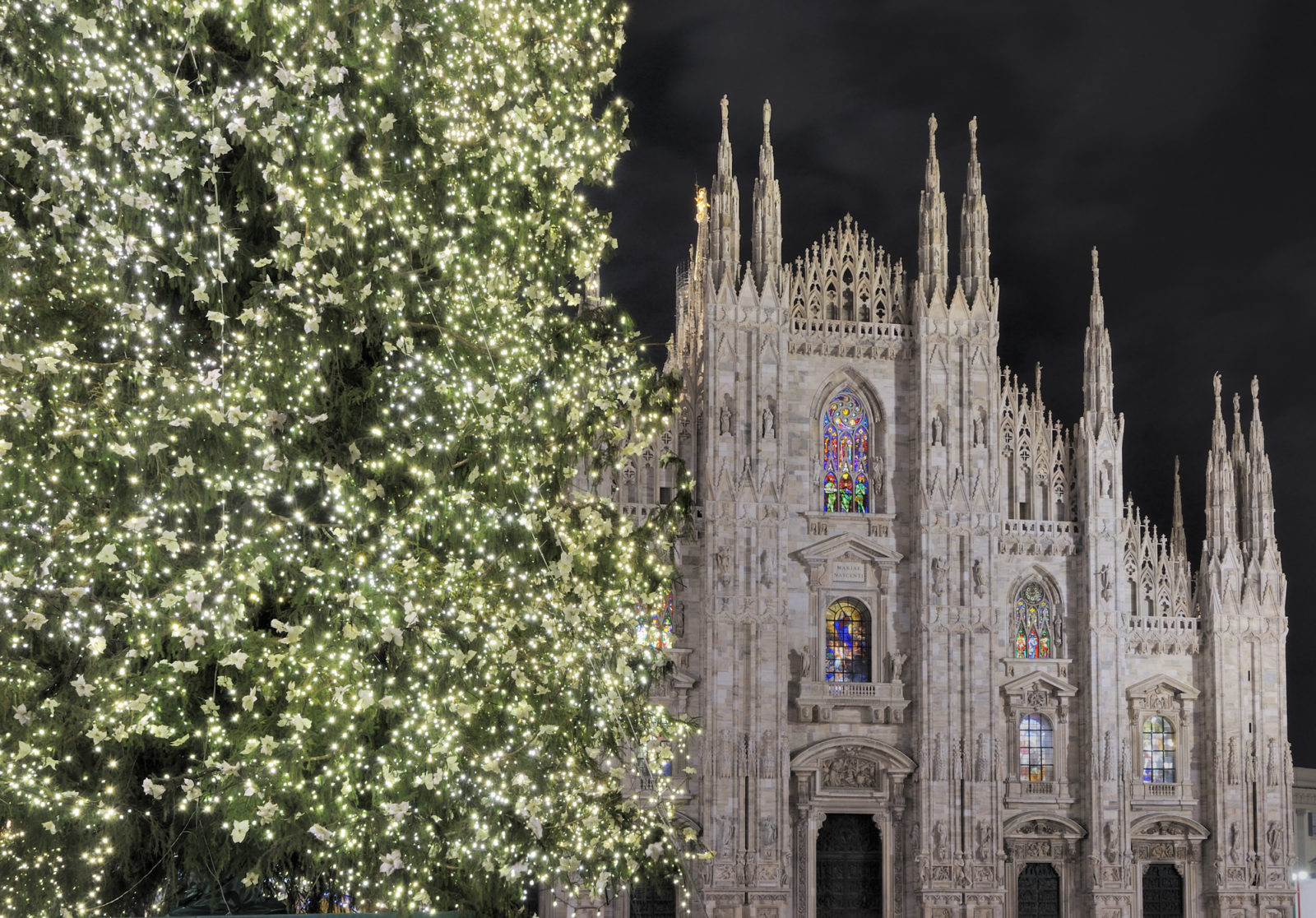 Christmas Tree in Milan