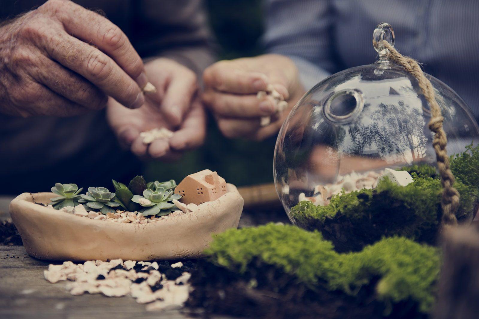 man assembling terrarium