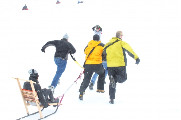 guests sledding in snow
