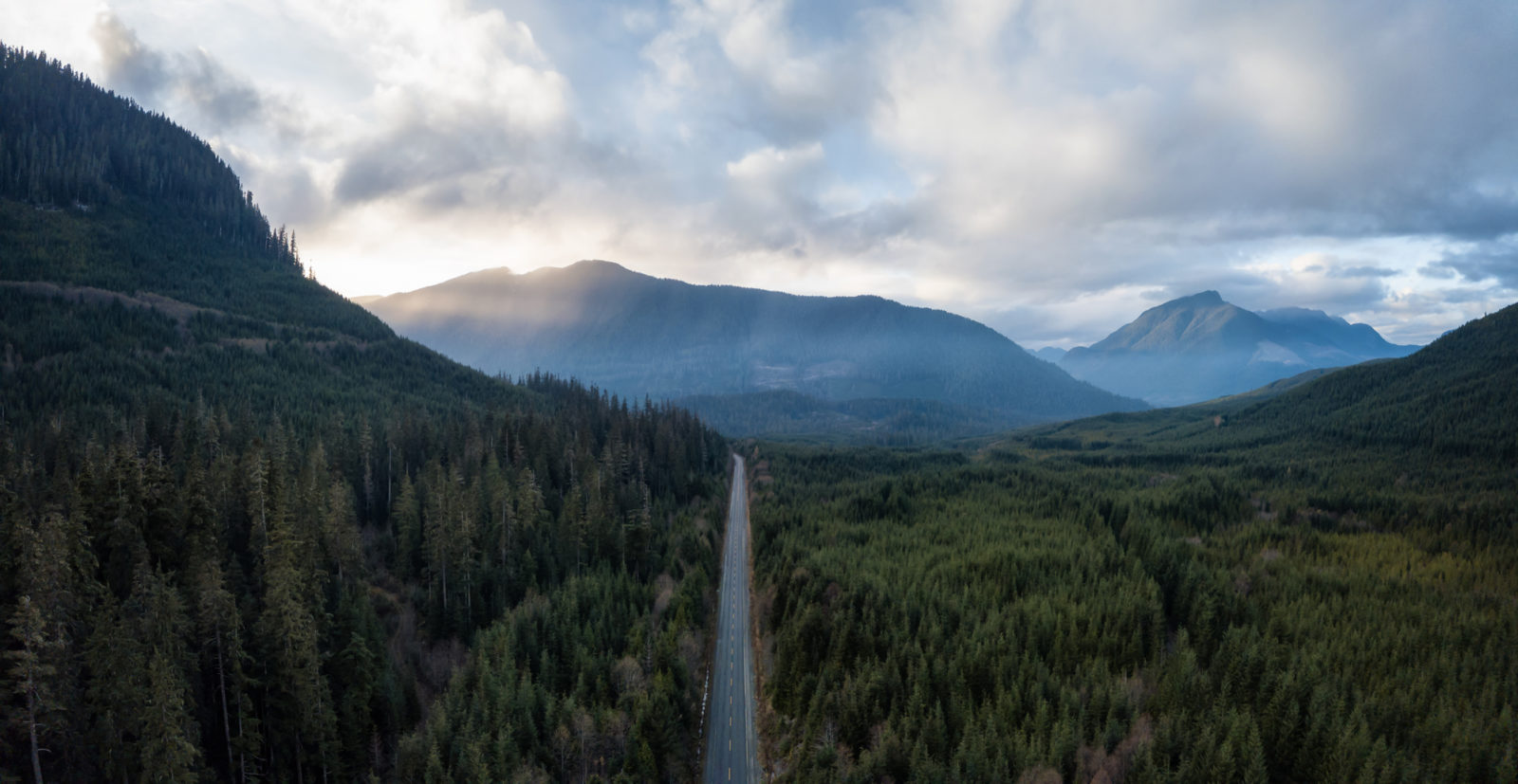 scenic pacific northwest forest