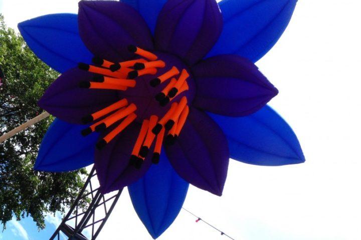 Purple, Blue & Orange Flower