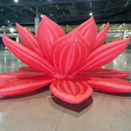 Lotus Air Sculptures