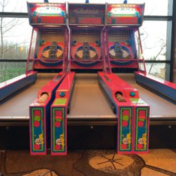 Ice Ball Skee ball