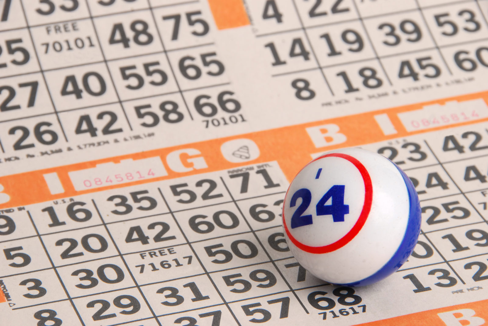 Bingo Experience for Events